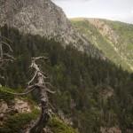 Pireneje, Lipiec (25)