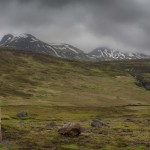 Wschodnie Fiordy Islandia