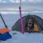 namiot zimą - Nordkinn