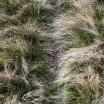 Pireneje wrzesień (25)