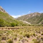 sucha laka, Chile