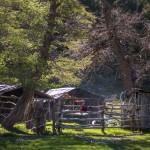 Campo- Chile