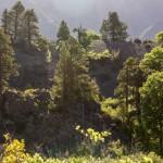 Condor Cirquit, Valle el Venado