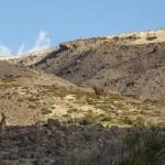 Condor Cirquit, vegas de Blanquillo