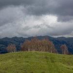 Levitana, Góry Trialeckie