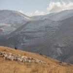 Z Urtsadzor do Selim
