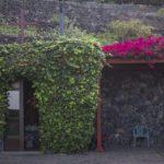 Gomera- Santa Catalina- Agulo