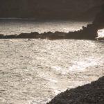 Gomera, Playa Santiago, Cabrito