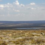 Pöyrisjärven erämaa cz2-Lenkihaka