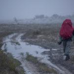Laponia, czerwiec