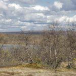 Pöyrisjärven erämaa cz1 -Naltijärvi