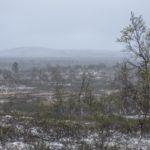 Pöyrisjärven erämaa cz5-Vanha Lapinkylä