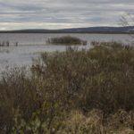Pöyrisjärven erämaa cz6-Pöyrisjärvi
